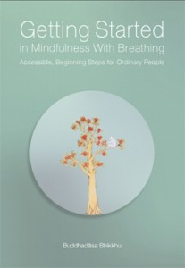 Getting Started in Mindfulness With Breathing รูปภาพ 1