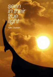 Seen in Their True Light รูปภาพ 1